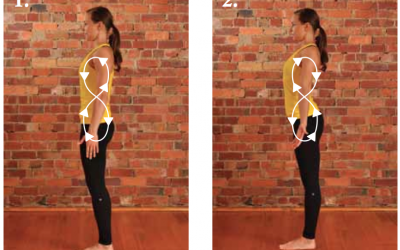'Figure-8 Loop' for dynamic sense of spinal alignment